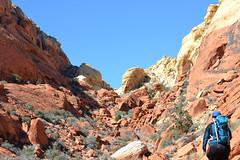 Hiking Ash Canyon (mama-bear) Tags: february 2019 lasvegas soloinvegas calicobasin hiking ashcanyon kerensa redrockcanyon