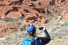 Hiking Partner (mama-bear) Tags: february 2019 lasvegas soloinvegas calicobasin hiking ashcanyon kerensa redrockcanyon