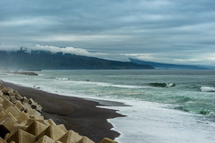 Tano Waves (Bracus Triticum) Tags: tano waves kōchiprefecture 高知県 shikoku 四国 日本 japan bicycletriparoundshikoku 4月 四月 卯月 shigatsu uzuki unohanamonth 2019 平成31年 spring april