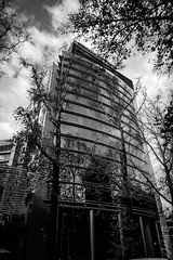 Avenida Providencia - BW-4 (Johnny Edward Bankson) Tags: chile edward fujifilm fujinon john johnbankson johnedwardbankson johnb photographer southamerica xt1 fotografia fotografo photographersonflickr photography ©johnbankson 1024mm bw bnw fujinonxf1024mmf40rois blackwhite blackandwhite blancoynegro bwphotography edifcio monochrome torre city ciudad providencia santiago buildings clouds edificio cloudy nublado skyscrapers photowalk