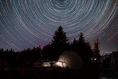 Star Trails over Cherry Springs (arlene sopranzetti) Tags: star trails cherry springs state park pennsylvania june 2019 party night sky summer starstax long exposure