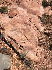 Disrupted and shifted banding pattern indistrubed sandstone in hidden Canyon in Motaqua area, Utah (swissuki) Tags: sandstone stgeorge gunlock geology motaqua navajo usa ut utah