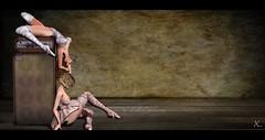 The Angel Opens Her Eyes (Xan Baran) Tags: 2ndlife secondlife avatar female mesh dancer ballet bodysuit tutu socks slippers et enfantterrible hair hanging argrace bobbed barberyumyum dpyumyum lelutka glamaffair maitreya speaker 7emporium sevenemporium pose kmaposes xans sit