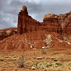 Capitol Reef National Park, Utah (__ PeterCH51 __) Tags: usa america amerika iphone peterch51 utah nationalpark capitolreef capitolreefnp capitolreefnationalpark redcliffs redrocks chimneyrock landscape scenery