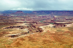 Island in the Sky (Steve Corey) Tags: view canyonlandsnp utah rock sandstone kayenta valley river reddirt stevecorey
