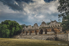 Uxmal 3969 ch (Emilio Segura López) Tags: uxmal arqueología maya arquitecturamaya palomar pirámide árbol yucatán méxico rutapuuc puuc
