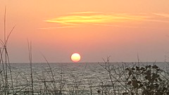 Sunset Over Horizon (ColFineArtistMar1) Tags: artistic beach beauty bright clearwater colors daytime evenning florida fotografia horizon hues hot inspiration joy light nature outdoors ocean original photograph perspective peaceful relaxing sunset sky scenery spring shore tourist unique view vacation water warm yellow amazing