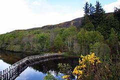 Reflection at the mound (stuartcroy) Tags: scotland mound reflection sea scenery sky still loch