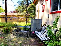 Happy Bench Monday! (peggyhr) Tags: peggyhr benches hbm wisteria baskets sunlight shadows green lavender orange pink blue white garden img9239a oregon usa level1pfr level2photographyforrecreation