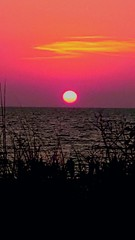 Vision of Sunset (ColFineArtistMar1) Tags: perspective photograph photo people artistic beach beauty colors clouds clearwater dramatic distortion evenning florida fotografia horizon hues hot life manipulated nature night natureart ocean outdoors orange oceano original peaceful gulf outdoor sunset sky scenery serene shore spring unique relaxing