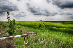 Green field (Zoom58.9) Tags: sky clouds field grasses barries landscape nature outside green himmel wolken feld gräser schranken landschaft natur draussen grün sony path way wege