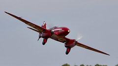 DH Comet (Bernie Condon) Tags: classic plane vintage de display aircraft aviation racing airshow preserved comet shuttleworth racer havilland oldwarden dh88 uk june flying collection british airfield festivalofflight june2019