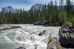 Rapids approaching Natural Bridge - near Field, BC (BlueVoter - thanks for 2.5M views) Tags: naturalbridge rapids waterfall cascade britishcolumbia yoho nationalpark