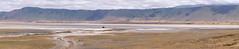 Lonely Hippo, Ngorongoro, Tanzania (Amdelsur) Tags: mammifères epithériens afrique fereongulés tanzanie thériens sarcoptérygiens hippopotameamphibie cétartiodactyles amniotes continentsetpays eucanimaux vertébrés ostéichthyens boréoeuthériens scrotifères tétrapodes hippopothamidés euthériens caldeiradungorongoro laurasiathériens africa amniota boreoeutheria hippo hippopotamecommun hippopotamidae hippopotamus hippopotamusamphibius laurasiatheria mammalia mammals ngorongorocaldera osteichthyes sarcopterygii tz tza tanzania tetrapoda vertebrata régiondarusha