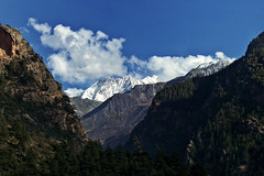 Purbi Dunagiri ~!! (Lopamudra !) Tags: lopamudra lopamudrabarman lopa landscape garhwal uttaranchal uttarakhand uttarkhand india purbidunagiri dunagiri peak ghamsali himalaya himalayas mountain mountains mount clouds cloud sky skyscape light lightandshade sunshine sunlight trek trekking valley vale beauty beautiful picturesque