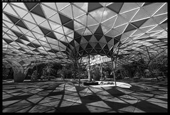 _3502423 copy (mingthein) Tags: thein onn ming photohorologer mingtheincom availablelight bw blackandwhite monochroem architecture building abstract geometry nikon d3500 afp 1020 f4556 dx vr afp1020