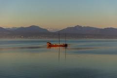Good Morning Lake Geneva (CraDorPhoto) Tags: canon5dsr landscape nature outside outdoors switzerland morges dawn morning lake water reflection mountains alps lacleman lakegeneva