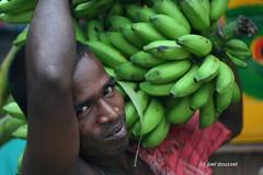 (entrelec) Tags: bananas bananes porter gingee tamilnadu