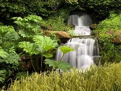 Waterfall (andypf01) Tags: waterfall green motion blur tranquil landscape flora plants iphone spectre longexposure rocks splash