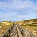 Walkway through the sand dunes in Cala Mesquida, Mallorca