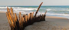The Trinculo Winter Sun (laurie.g.w) Tags: the trinculo shipwreck 90milebeach eastgippsland victoria sand beach ocean shoreline coastline waterscape rust australia