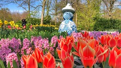 Proud Mary, Keukenhof Gardens, Lisse, Netherlands - 2994 (HereIsTom) Tags: webshots travel europe netherlands holland dutch view nederland views you nature sun tourists cycle vakantie fietsvakantie cycling holiday bike bicycle fietsen plus apple ios camera iphone 8 art spring bloemen 9 garden flowers lente 2019 april tulips tulpen proud yellow green mary blue red hyacinten trees hyacinths blauw delfs sculptures