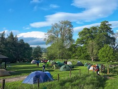Tents at the 2019 Cycle Touring Festival