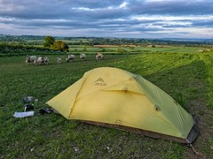 Wild camp in Cotswolds
