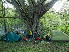 Wild camp near Stourport-on-Severn
