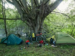 Wild camp beside River Severn