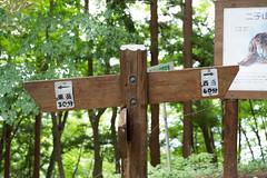 _IMG2449.jpg (nomachishinri) Tags: 秩父郡 埼玉県 日本