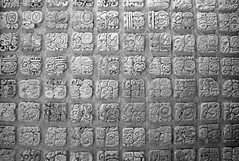 Temple XVII Glyphs (peterkelly) Tags: digital canon 6d bw northamerica mexico gadventures mayandiscovery chiapas palenque palenquenationalpark maya mayan museum templexviii glyphs carving lakamha sitiomuseum square