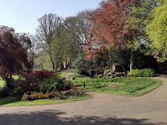 Avenham and Miller Park, Preston (janettehall86) Tags: avenhampark millerpark park prestonlancashire preston lancashire uk northwestengland england naturephotography nature naturelovers outdoors outdoorphotography photography photo landscapephotography landscape landscapelovers beautiful trees bush colour color photosofpreston huaweip30pro huawei flickr flickrcentral