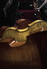 Los violines se van, los contrabajos se quedan (Guillermo Relaño) Tags: guillermorelaño sonya7 a7iii a7m3 teatro nuevoapolo camerata musicalis tchaikovsky cuarta 4 sinfonia ensayo contrabajo especial ¿porqueesespecial dof