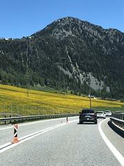 San Bernadino Pass with dandelions (adamroscoe) Tags: summer schweiz switzerland suisse svizzera mountain mountainpass graubünden graubunden