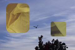 yellowsky (Keagan O) Tags: bridgepreferenceslabelgreenapproved photoshop color lines shapes invert