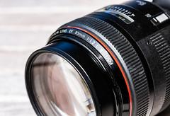 6M7A6061 (hallbæck) Tags: objektiv lens canon canonef85mmf12liiusm canoneos5dmarkiii ef100mmf28lmacroisusm mh hørsholm denmark macro macrounlimited objective