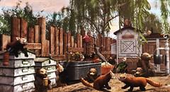 Backyard shenanigans (Alexa Maravilla/Spunknbrains) Tags: mutresse pets animals botanical outdoors photography blog heart blogger secondlife virtual granola virtualworld thearcade 3dmesh slanimals hextraordinary room rezz