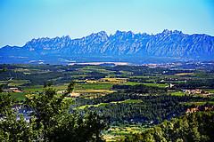 Montserrat des de els Casots, Subirats (Angela Llop) Tags: catalonia penedes barcelona montserrat enoturismepenedès