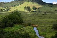 A curva do ribeiro (Márcia Valle) Tags: juizdefora cenarural zonarural ruralscene nikon brasil brazil márciavalle minasgerais natureza outono autumn nature d5100 riacho ribeiro creek ribeirãodocágado estradadesarandira