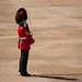 Trooping of The Colour June 2019 RN 25