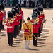 Trooping of The Colour June 2019 RN 18