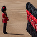 Trooping of The Colour June 2019 RN 27