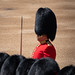 Trooping of The Colour June 2019 RN 26