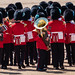 Trooping of The Colour June 2019 RN 19