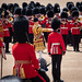 Trooping of The Colour June 2019 RN 17