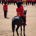 Trooping of The Colour June 2019 RN 14