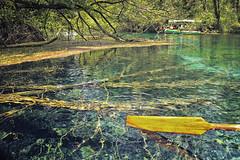 Under the surface (tagois) Tags: northmacedonia севернамакедонија светинаум saintnaum springsofstnaum охридскоезеро lakeohrid ngc