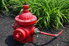 Fire Hydrant watering plants (mrgraphic2) Tags: franklin indiana rx10 fire hydrant water red