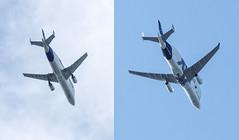 Beluga - same but different! (SteveEbb) Tags: belugaxl airbusbeluga d810